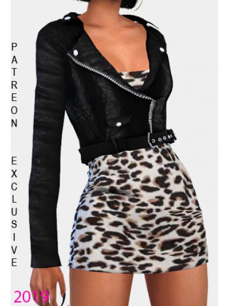 Leopard Dress & Leather Jacket 2 files